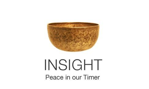 Image result for Insight Timerlogo